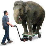 Appleton Cart Mover